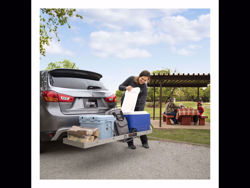 Curt Tray-Style Cargo Carrier